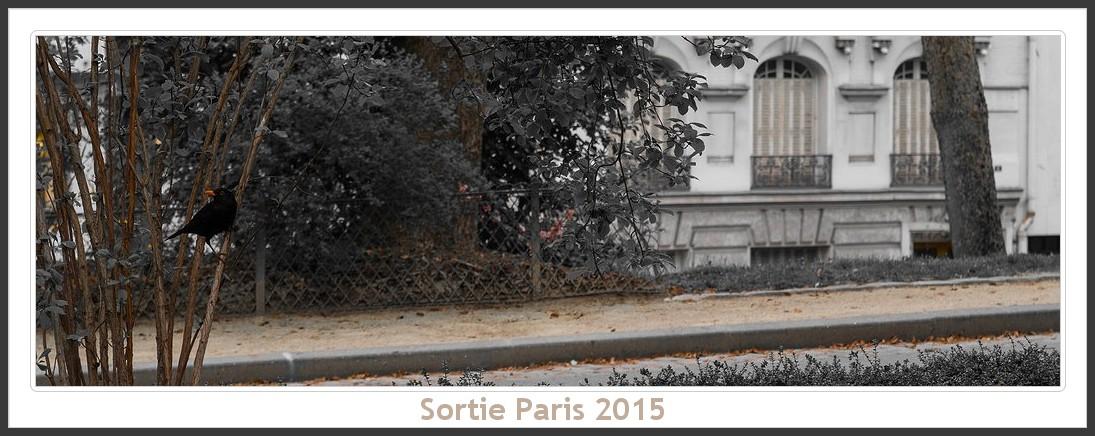 Sortie ANNIVERSAIRE 2015 PARIS 1I AVRIL. Paris_KparK_2015_02