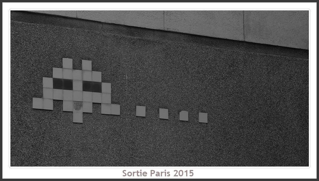 Sortie ANNIVERSAIRE 2015 PARIS 1I AVRIL. Paris_KparK_2015_03