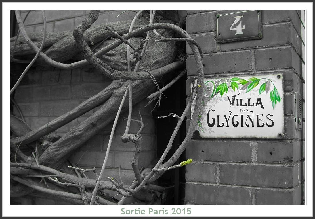 Sortie ANNIVERSAIRE 2015 PARIS 1I AVRIL. Paris_KparK_2015_06