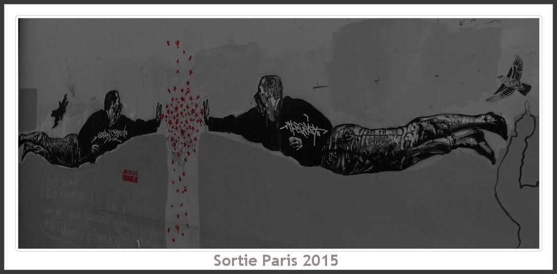 Sortie ANNIVERSAIRE 2015 PARIS 1I AVRIL. - Page 4 Paris_KparK_2015_12